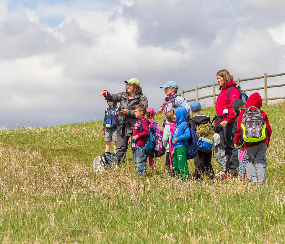 Children observing nature with their teachers